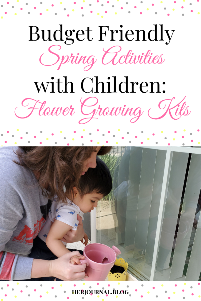 Budget Friendly Spring Activities with Children: Flower Growing Kits